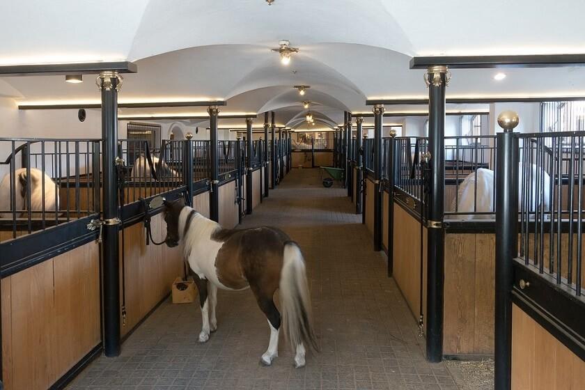 Blås rent häststallet med en lövblås